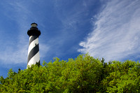 Cape Hatteras Light and Trees